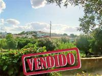 Terreno - Alegrete - Portalegre - Venda - REF: 21-11132