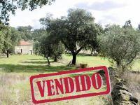 Granja con Casa Rural - Escalos Cima - Castelo Branco - REF: 21-11599