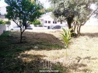 Building Plot - Castelo Branco - ID: 21-11621