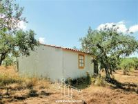Farm with Olive Grove and Annex - Malpica Tejo - Castelo Branco - ID: 21-11626